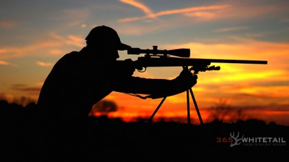 Seven Tips For A More Accurate Coyote Rifle