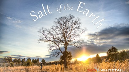 Film Review: Salt Of The Earth