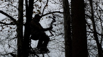 Tree Stand Placement And Trimming Shooting Lanes