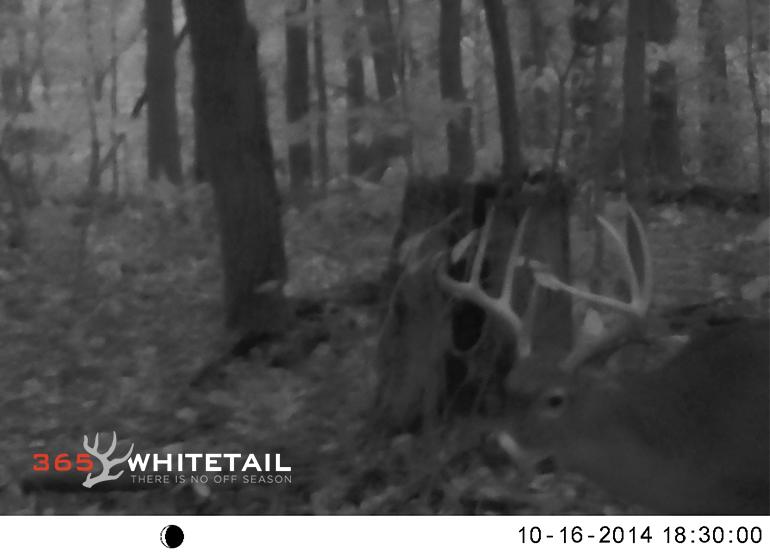 limiting hunting impact
