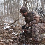 post season whitetail tactics