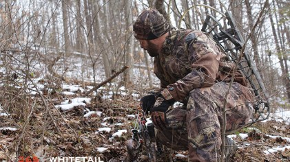 Post-Season Whitetail Adjustments